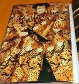 Kabuki Actor Nakamura Kichiemon : Harimaya 1992-2004 book japan