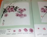 Flowers Drawn by Japanese Ink Wash Painting India Ink book from japan