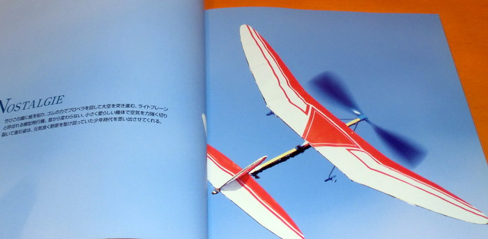 how to fly an airplane book