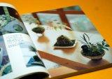 MINI SMALL BONSAI & KOKE DAMA Interior BOOK from Japan