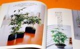 MINI SMALL BONSAI PHOTO BOOK by KAORI YAMADA from Japan