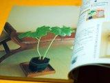 Enjoy the four seasons with MINI BONSAI Interior BOOK from Japan