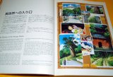 Exhibit Spirited Away in Ghibli Museum book by english and japanese