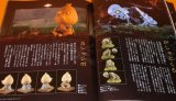 Three-dimensional YOKAI Encyclopaedia by Shigeru Mizuki book japan ghost