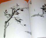 The Primer of Japanese Ink Wash Painting book from Japan India Ink zen