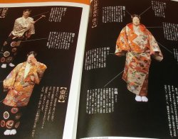 Photo1: The Noh Costume seen by Programs book from Japan Japanese nogaku kimon