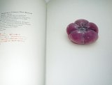The graphics of Japanese Confection WAGASHI book Japan Japanese wagasi