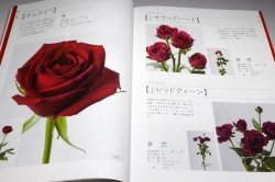 Photo1: The Encyclopaedia of Cut Roses 1 : RED PINK BI-Color from Japan Japanese