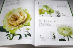 Photo1: The Encyclopaedia of Cut Roses 2 : GREEN WHITE YELLOW ORANGE BROWN PURPLE