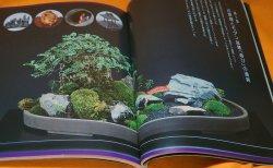 Photo1: MODERN BONSAI MINIATURE GARDEN BOOK from JAPAN JAPANESE
