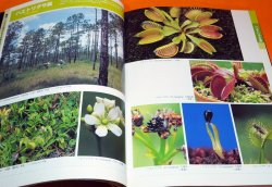 Photo1: AMAZING WORLD OF THE CARNIVOROUS PLANTS BOOK FROM JAPAN JAPANESE