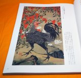 Ito Jakuchu Works Book from Japan Edo Period Japanese Painter
