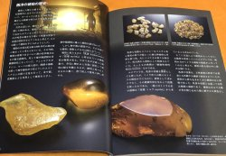 Photo1: Amber - Fossilized tree resin book from Japan Japanese