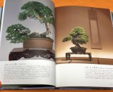 BONSAI Appreciation knowledge of traditional garden plants Japanese Book