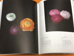 Photo1: Candle Textbook: Applied Design and Manufacturing Techniques Japanese Book