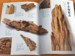 Photo1: KOUBOKU (Fragrant wood, Aromatic tree) Encyclopedia Japanese book