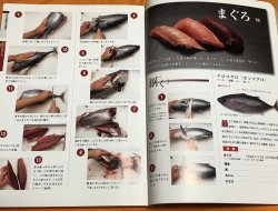 Photo1: Edo-style Sushi 33 items : How to clean a fish and hand-roll Japanese book