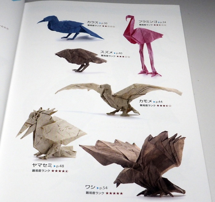 The Complete Book of Origami: Step-by-Step Instructions in Over ... | 658x700